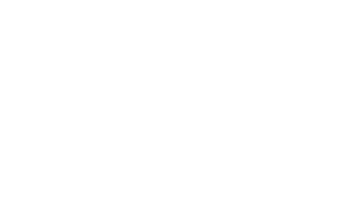 Wu Tang Collection